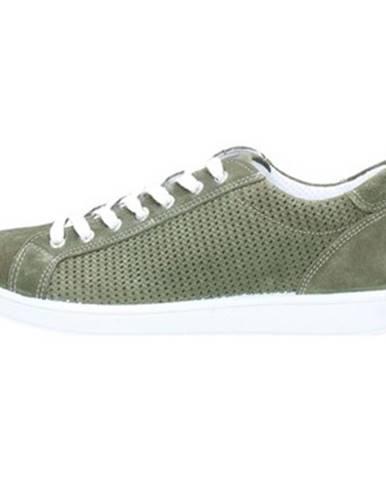 Zelené tenisky IGI CO